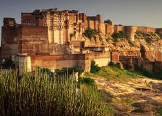 5 Best Tips for Finding Cheap Rajasthan Tour Packages Read Here full story https://bit.ly/2MrwnUu Contact: +91-9414969491 Visit us: https://www.royaladventuretours.com/ #Rajasthan_Tour_Package #Rajasthan_Tourism_Package #Rajasthan_Travel_Package #cheap_Rajasthan_Tour_Package