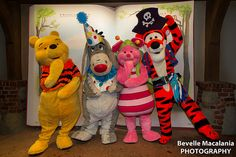 Winnie The Pooh, Tigger, Eeyore, Pink Pig Mascot Costume On Sale, sold at competitive price on MascotShows.com