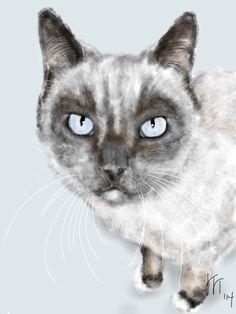 Custom Cat Portrait custom portrait pet by LITDigitalPaintings