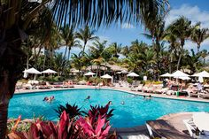Hotel Riu Florida Beach - RIU Hotels & Resorts