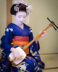 April 2017: Maiko Kikusana (Hanafusa Okiya) of Miyagawacho playing the shamisen at an ozashiki.