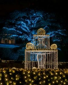 Longwood Gardens 2013 light display