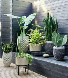 4 Grand Cool Ideas: Diy Backyard Garden Planters backyard garden trees how to grow.Backyard Garden Shed Storage backyard garden design thoughts. Rock Planters, Tall Planters, Cement Planters, Outdoor Planters, Outdoor Gardens, Cement Patio, Garden Planters, Porch Planter, Modern Planters