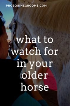 Pro Equine Grooms - The Older Horse http://www.proequinegrooms.com/tips/grooming/looking-out-for-the-older-horse/