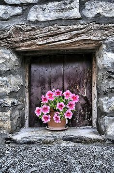 Love the wood and stone. Pretty pink petunias.NICE & SIMPLE - 1 POT.