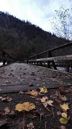 Autumn 🍂 Autumn, Explore, Mountains, Nature, Photography, Travel, Naturaleza, Photograph, Viajes