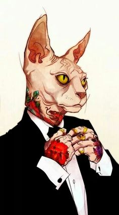 20 Sphynx Tabaxi Ideas Sphynx Character Art Character Design Have you read the tabaxi's racial trait? 20 sphynx tabaxi ideas sphynx