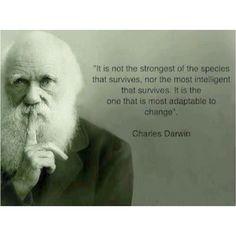 學會認真 學會忠誠 進化成更好的人