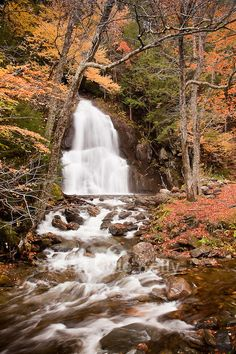 Fall foliage at Moss Glen Falls in the Green Mountain National Forest, Granville, VT│Susan Cole Kelly Photography