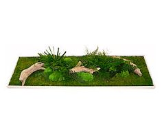 Tableau végétal bois et végétaux stabilisés, vert et blanc – 140*40