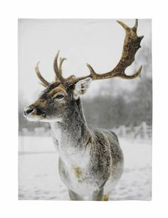 deer Tea Towel7.50