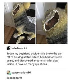 Dog: muahahahahaha this isn't even my true form yet!