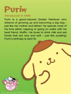 About pompompurin
