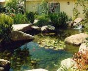 Plantas para lagos artificiais