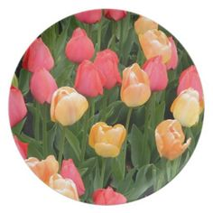 Tulips (Red& Gold) Plate