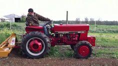 IH 284 for tilling the garden