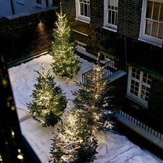 Discover ideas for outdoor Christmas decoration on HOUSE - design, food and travel by House & Garden.