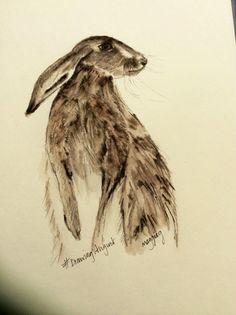 #Hare #DrawingAugust