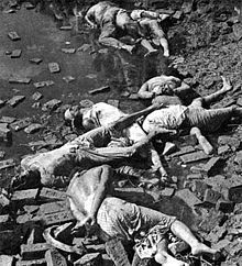 1971 Bangladesh genocide – Rayerbazar killing field photographed immediately after the war started, showing bodies of Bengali nationalist intellectuals (Image courtesy: Rashid Talukdar, Independence War, World History, Photos Du, Historical Sites, Pakistan, Crime, United States, The Unit, Fields
