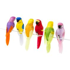 Carnival Fiesta Tropical Birds ($14) ❤ liked on Polyvore featuring home, outdoors, outdoor decor, bird, decor, feather, parrot, supplies, bird garden decor and outdoor garden decor