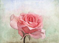 Rose by Chicinikki.deviantart.com on @DeviantArt