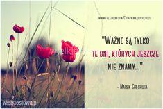 Ważne są tylko te dni... #Grechuta-Marek,  #Z-piosenek
