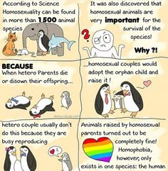 """For any homophobes who say homosexuality is """"unnatural"""", just show them this."""