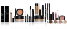 Arbonne Makeup Special Value Pack. Includes eye primer, makup remover, mascara, 4 eye shadows, loose powder, bronzer, primer, liquid foundation, blush, pencil eye liner, liquid concealer, brow pencil, brow cream, lipstick, lip gloss, & lip pencil #Arbonne #puresafebeneficial #glutenfree #vegan #petaapproves
