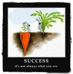 SUCCESS Its not always what you see