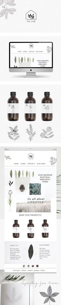 Branding and website for olive skincare by Ryn Frank logo design minimalist icon line drawing illustration packaging bottle: