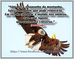 Max Lucado. Max Lucado Frases, Word Of God, Pine Tree, Messages, Xmas, Pastor