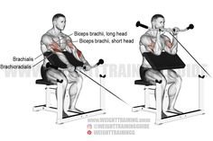 Exercise: Cable reverse preacher curl. Target muscle: Brachioradialis. Synergists: Biceps Brachii and Brachialis. Mechanics: Isolation. Force: Pull.