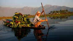 In #Kashmir, newfound peace comes to a divided paradise, where life's pace is set by echoing calls to prayer and the gentle paddling of colourful canoes in glistening #DalLake. #India