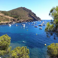 A good day #inCostaBrava! #aroses #visitroses  #descobreixcatalunya #catalunyaexperience #igersgirona #parcnatural #capdecreus #capnorfeu