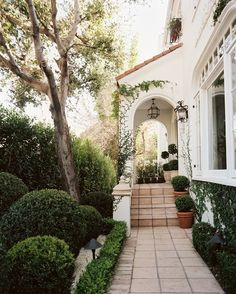GREEN HOUSE | Mark D. Sikes: Chic People, Glamorous Places, Stylish Things