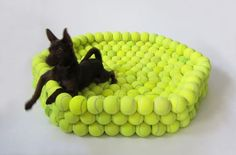 tennis ball dog bed made from recycled tennis balls!
