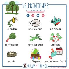 Learn French with A Cup of French! Easy and fun lessons with infographics and videos. You can enjoy your cup of French wherever you want and at your own pace. French Expressions, French Language Lessons, French Language Learning, French Lessons, French Poems, French Phrases, French Verbs, French Grammar, French Teacher