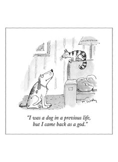 New Yorker Cartoon Magnet - Dog in a Previous Life