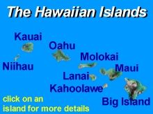 Hawaii Tours and Activities | Things To Do Hawaii | Maui, Oahu, Kauai, Big Island