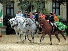 Royal Horse Show Jerez - Royal Andalusian School of Equestrian Art