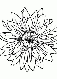 Free Printable Sunflower Coloring Pages For Kids | Sunflowers, Free ...