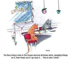 These funny cartoon cats will make every cat lover laugh and prove that a feline might actually be funnier than any other animal in real life. Noel Christmas, Christmas Cats, Christmas Humor, Christmas Things, Christmas Ornaments, Christmas Graphics, Christmas Animals, Christmas Quotes, Christmas Images