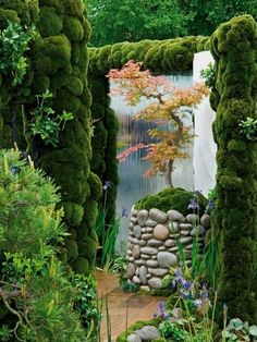 Simple Style: The Subtle Appeal of Japanese Gardens. Like the contrast of the maple tree in front of the mirrored glass waterfall. #luxuryzengarden #japanesegardens #JapaneseGardens