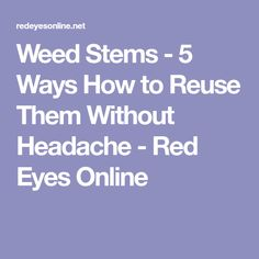 Weed Stems - 5 Ways How to Reuse Them Without Headache - Red Eyes Online