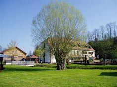 Wasgau News - Aktuelle News aus der Region: Mühlenmuseum in Volmunster (Elsass)