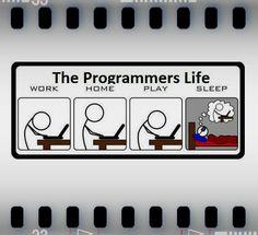 Programmers life :) #programming #humor