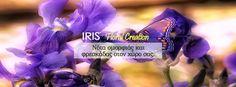 Iris - Ανθοπωλειο Ηρακλειο Κρητης. Φυτά εσωτερικού και εξωτερικού χώρου. Συνθέσεις λουλουδιών. Στολισμός γάμου και βάπτισης. Αποστολή σε όλη την Ελλάδα.