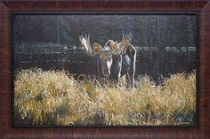 North American Art has an amazing variety of fine framed wholesale art prints here in our Rivers, Lakes and Water Scenes section of our online gallery. Online Gallery, American Art, Framed Art Prints, Moose Art, Wildlife, Autumn, Landscape, Poster