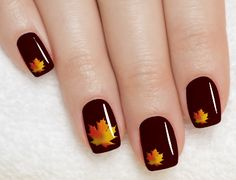 thanksgiving nail art pictures | Brown Nails Maple Leaves Thanksgiving Nail Art