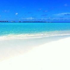 I need vitamin SEA #sea #sand #instadaily #instamood #likeforlikes #nature #beautifulday #maldives2016 #maldives #beautiful #peaceful #blessed #godisgreat #allahisthecreatorofeverything #instanature #naturelovers #nature_perfection #photographylovers #naturephotography#natureisawesome #natureisbeautiful #perfect #paradise #maldivesislands #bluesea#sunnysideoflife#travel #travelmaldives #whitesand #beach by xafu_nsr